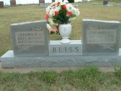 Leona E. <I>Hossman</I> Bliss