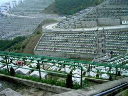 Tseung Kwan O Chinese Cemetery