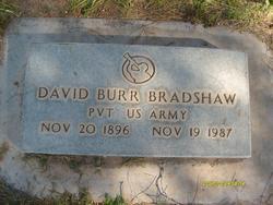David Burr Bradshaw