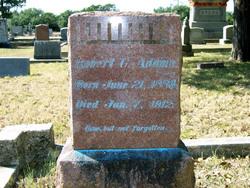Robert Grover Adams