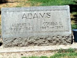 Albert Sydney Adams