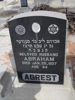 Abraham Agrest