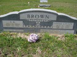 Vinnie <I>Cayton</I> Brown
