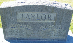 Alice <I>Hatch</I> Taylor