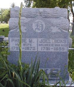 Joel Hicks