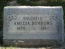Amelia <I>Howerter</I> Burrows