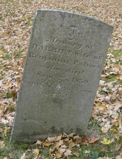 Harriet Palmer