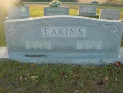 Louis Curtis Eakins