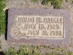 Waldo Wright Naegle