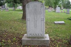 Rose <I>Weithaus</I> Maney