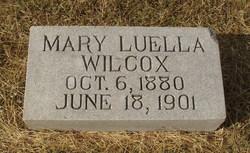 Mary Luella Wilcox