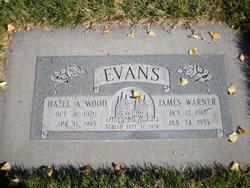 Hazel Annalee <I>Wood</I> Evans
