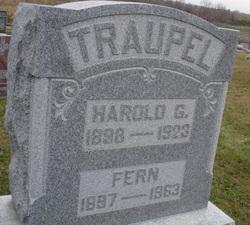 Harold G. Traupel