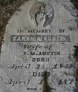 Sarah Ann <I>Chandler</I> Austin