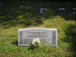 Rebecca Anna <I>Stayer Hockenberry</I> Robison