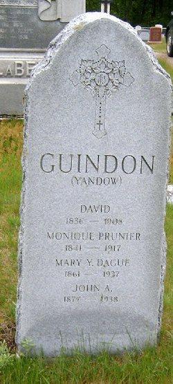 David Guindon