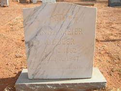 Anna <I>Meier</I> Gubler