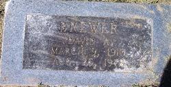 David A Brewer
