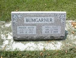 Nina Mary <I>Davis</I> Bumgarner
