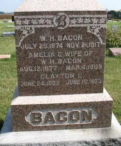 Amelia E Bacon