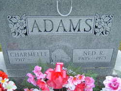 Ned R Adams