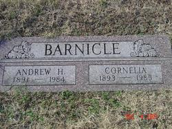 """Andrew Harrison """"Andy"""" Barnicle"""