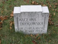Waclawa <I>Wapniarski</I> Drogowski