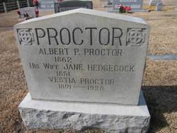 Jane <I>Hedgecock</I> Proctor