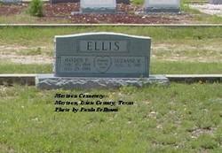 Hayden P Ellis