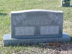 Agnes N McColley