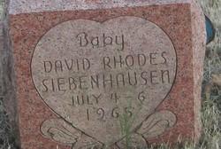 David Rhodes Siebenhausen