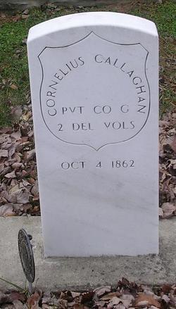 Pvt Cornelius Callahan