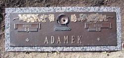 Henry Adamek