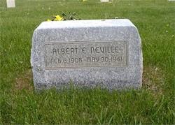Albert Elden Neville
