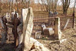Barton Family Cemetery