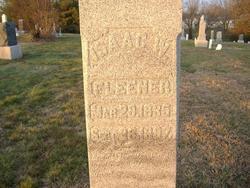 Isaac Washington Fleener