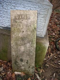 David Hedge