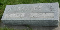 Harold D Bailey