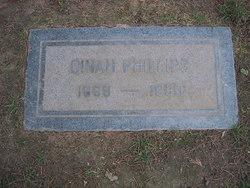 Dinah Phillips