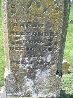 Aaron H Alexander
