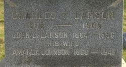 Charles T Larson