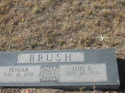 Pender Brush