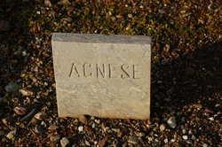 Margaret Agnes <I>Doyle</I> Casey