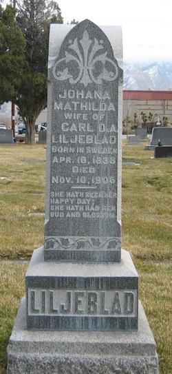 Johana Mathilda Liljeblad
