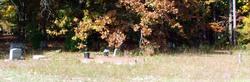 Peters Memorial Cemetery Historic Site