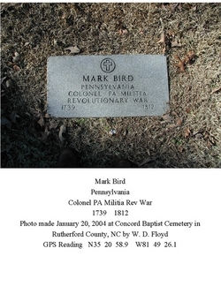 Mark Bird
