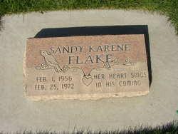 Sandy Karene Flake
