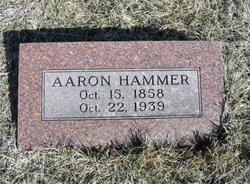 Aaron Hammer, Jr