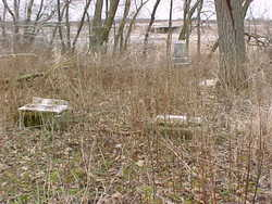 School Graveyard #3