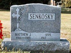 Ann D <I>Branzovich</I> Senkosky